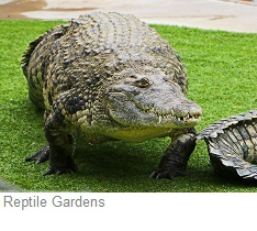 Reptile Gardens, South Dakota