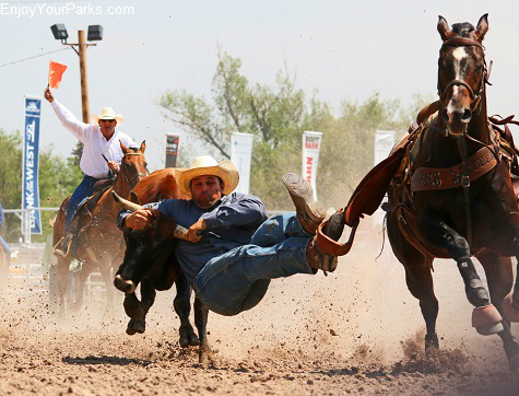 Buffalo Bill Cody Stampede Rodeo, Cody Wyoming