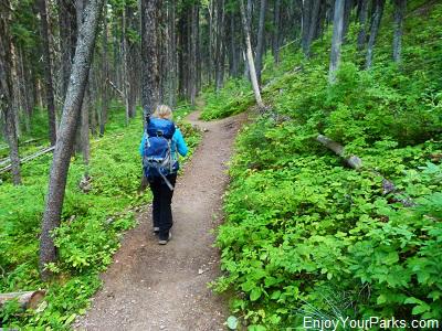 Akamina Ridge Trail, Akamina-Kishinena Provincial Park near Waterton Lakes National Park