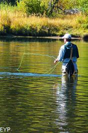 Fly Fishing, Oxbow Bend, Grand Teton National Park
