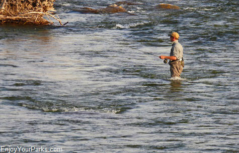 Fly fisherman, Madison River Valley Montana