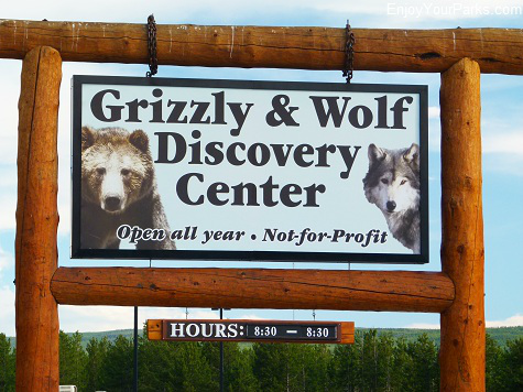 Grizzly & Wolf Discovery Center, West Yellowstone Montana, Yellowstone National Park