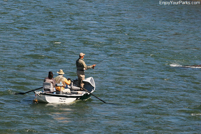 Fly fisherman, Paradise Valley Montana