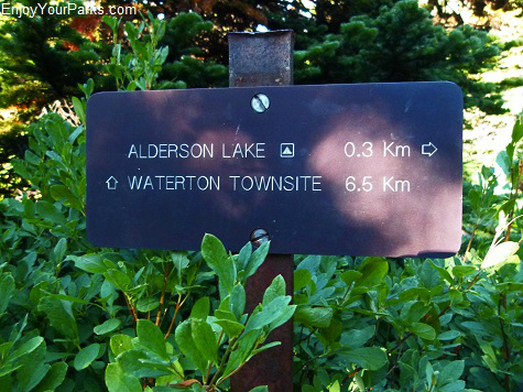 Alderson Lake Spur Trail, Carthew-Alderson Trail, Waterton Lakes National Park