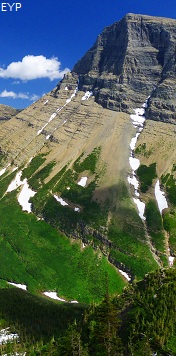 Grinnell Mountain, Swiftcurrent Pass Trail, Glacier National Park