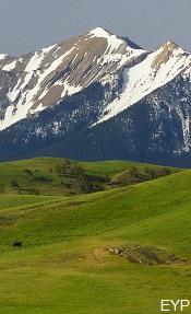 Absaroka Mountain Range Montana