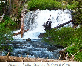 Atlantic Falls, Cut Bank Area, Glacier National Park