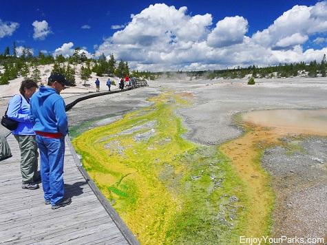 Norris Geyser Basin, Yellowstone National Park.