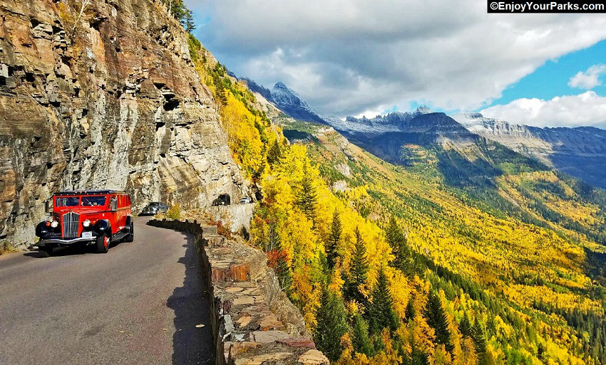 Fall Colors on the Going To The Sun Road, Glacier Park