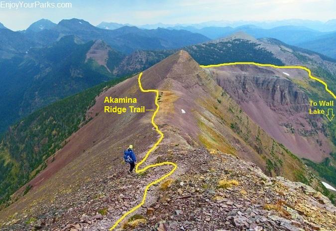 Akamina Ridge Trail in the Akamina-Kishinena Provincial Park