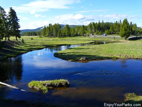 Gibbon River near Norris Campground, Yellowstone National Park