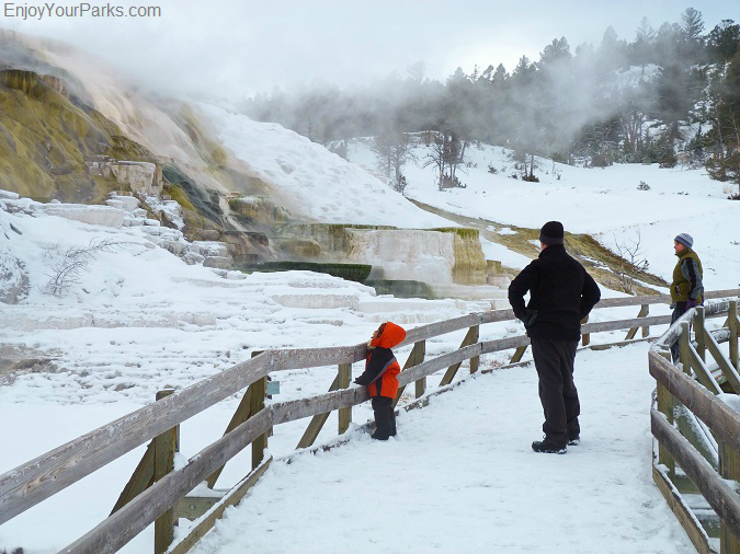 Mammoth Hot Springs, Winter In Yellowstone Park