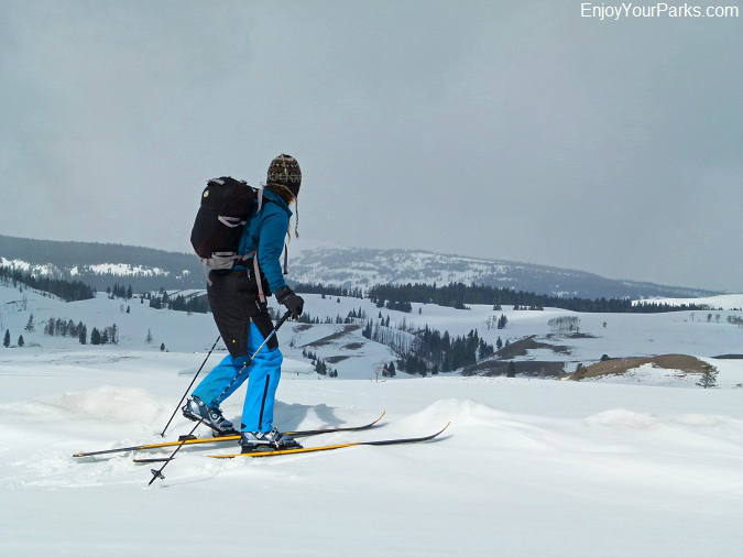 Yellowstone Cross Country Skiing, Winter in Yellowstone National Park
