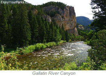 Gallatin River Canyon, Montana