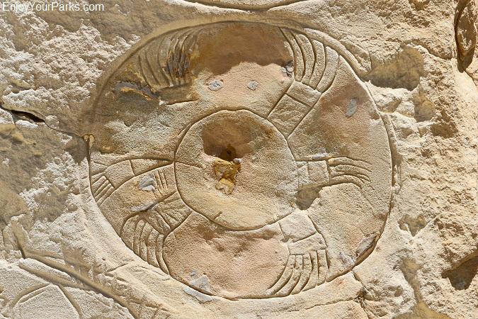 Csstle Gardens Petroglyphs, Wyoming