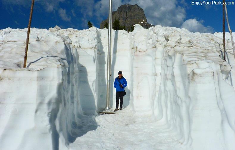 Logan Pass, Glacier Park