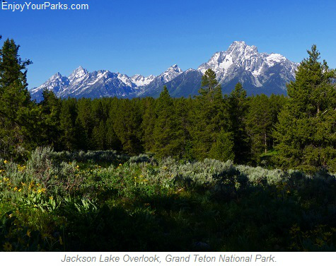 Jackson Lake Overlook, Grand Teton National Park