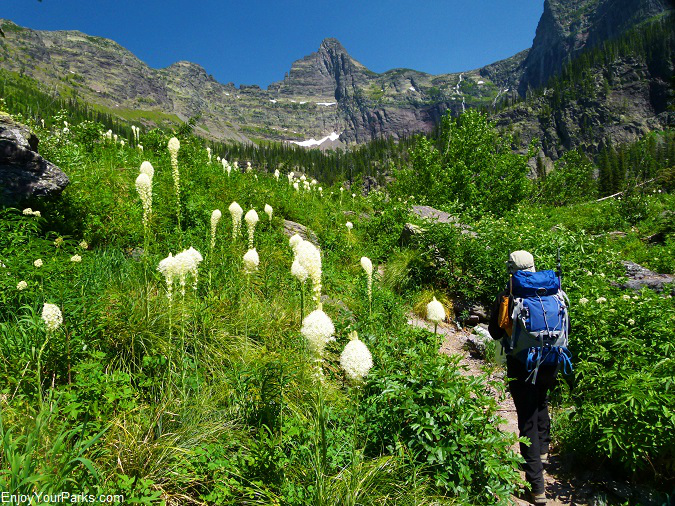 Snyder Lake Trail, Glacier National Park