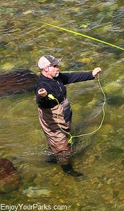 Montana Fly Fisherman