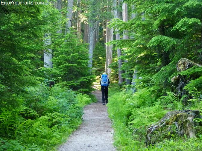 Sperry Trail, Glacier National Park