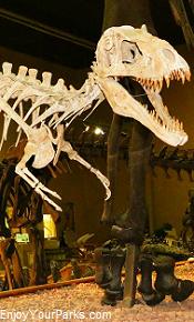 Wyoming Dinosaur Center, Thermopolis Wyoming