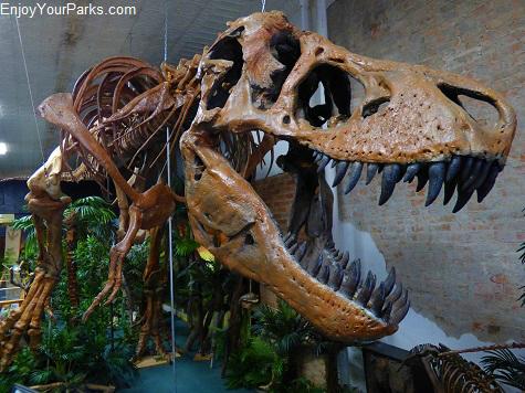 T-Rex Dinosaur near Makoshika State Park Montana