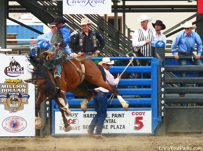 Cody Stampede Rodeo, Cody Wyoming, Yellowstone National Park