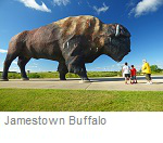 Dakota Thunder, Jamestown Buffalo