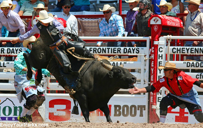 Bull rider at the Cheyenne Frontier Days Rodeo