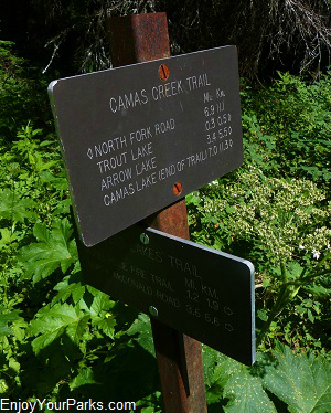 Camas Creek Trail Junction, Trout Lake Trail, Glacier National Park