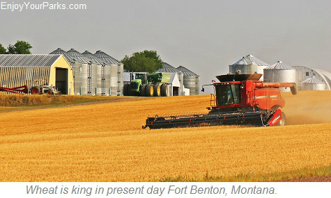 Wheat farm, Fort Benton Montana