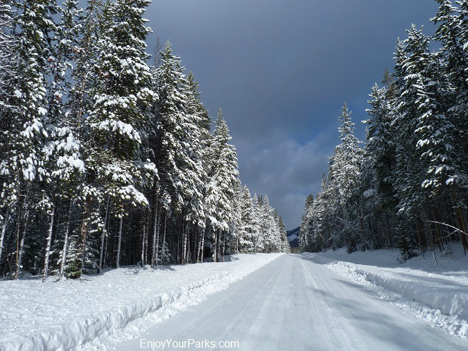 Winter in Yellowstone Park, Yellowstone National Park