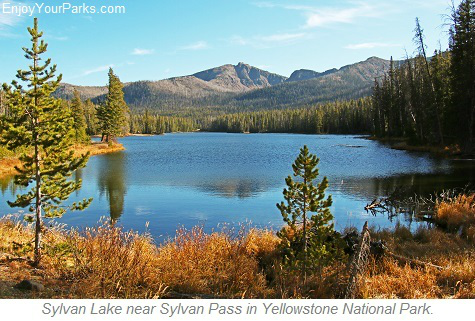 Sylvan Lake, Yellowstone National Park, Wyoming