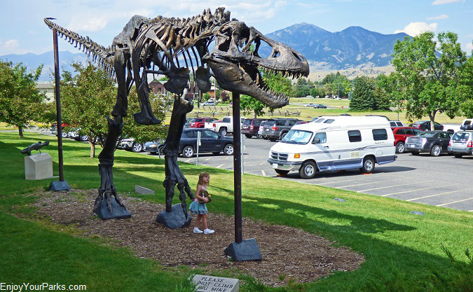 Museum of the Rockies, Bozeman Montana