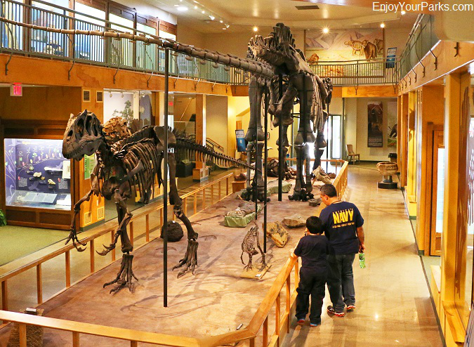 University of Wyoming Geological Museum in Laramie Wyoming