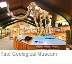 Tate Geological Museum, Casper Wyoming