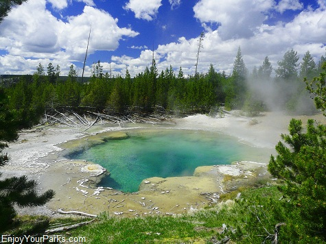 Emerald Spring, Norris Geyser Basin, Yellowstone National Park
