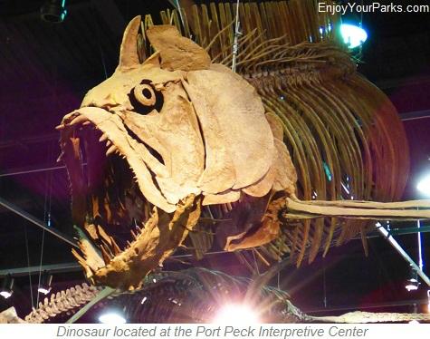 Prehistoric Fish, Fort Peck Interpretive Center, Charles M. Russell National Wildlife Refuge, Montana