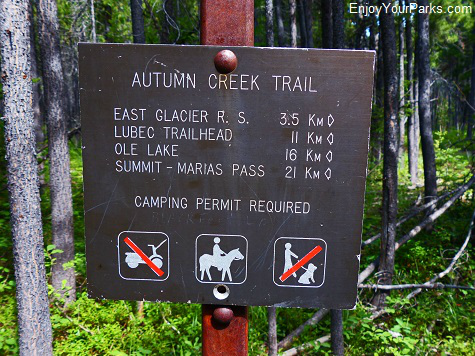 Autumn Creek  Trail, Glacier National Park
