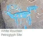White Mountain Petroglyph Site