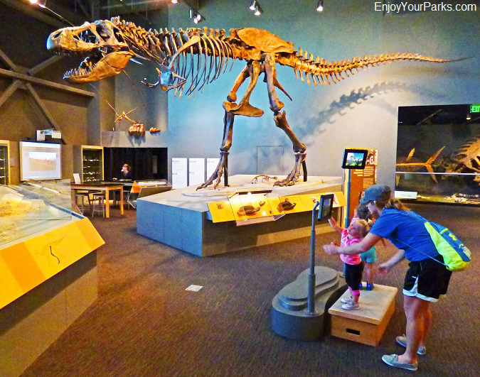 T-Rex, Adaptation Gallery, North Dakota Heritage Center, Bismark