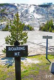Roaring Mountain, Norris Junction Area, Yellowstone National Park