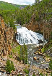 Gibbon Falls, Norris Junction Area, Yellowstone National Park