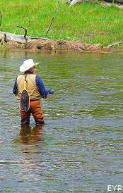 Fisherman on Gibbon River, Norris Junction Area, Yellowstone National Park
