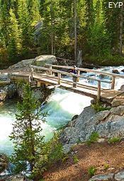 Trail to Hidden Falls, Jenny Lake, Grand Teton National Park