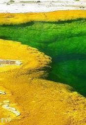 Emerald Pool, Black Sand Geyser Basin, Yellowstone National Park