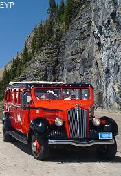 Red Bus, Glacier National Park
