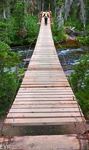 South Shore Trail, Upper Two Medicine Lake, Glacier National Park