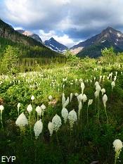 Two Medicine Pass, Glacier National Park
