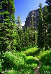 Upper Two Medicine Lake Trail, Glacier National Park